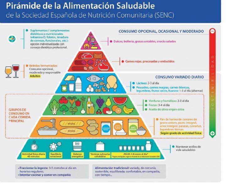 Pirámide de la base nutricional